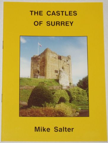 The Castles of Surrey, by Mike Salter